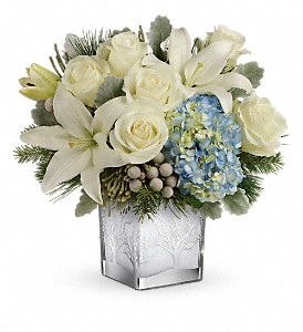 Teleflora's Silver Snow Bouquet in flower shops MD, Flowers on Base