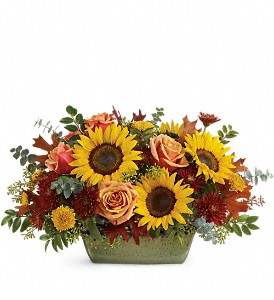Teleflora's Sunflower Farm Centerpiece in Newmarket ON, Blooming Wellies Flower Boutique