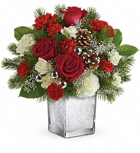 Teleflora's Woodland Winter Bouquet in Canton NY, White's Flowers