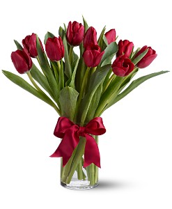 Teleflora's Radiantly Red Tulips in San Diego CA, Mission Hills Florist