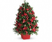 Deck the Halls Tree in Norwalk CT, Richard's Flowers, Inc.
