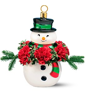Teleflora's Frosty the Snowman Jar in Alexandria MN, Anderson Florist & Greenhouse