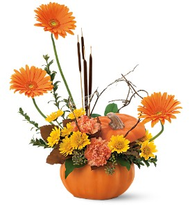Autumn Pumpkin in Bakersfield CA, White Oaks Florist