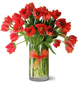 Teleflora's Radiantly Red Tulips Premium in Quitman TX, Sweet Expressions