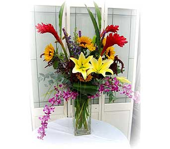 Tropical Greeting in Lake Forest CA, Cheers Floral Creations