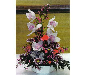 Stem of orchids w/ Minis and Daisies in Sioux Falls SD, Country Garden Flower-N-Gift