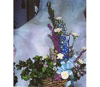 peanut basket with plant on one side and fresh arrangement on other in Sioux Falls SD, Country Garden Flower-N-Gift