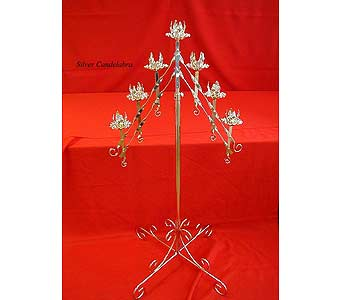 7 Branch Silver Candelabra in Grand Island NE, Roses For You!