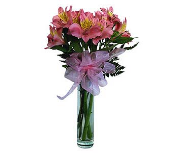 FF38 ''Alstromeria Vase'' in Oklahoma City OK, Array of Flowers & Gifts