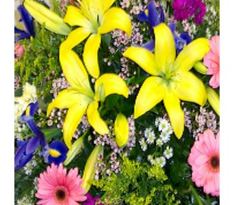Florist Choice Bouquet in Bayside NY, Bell Bay Florist