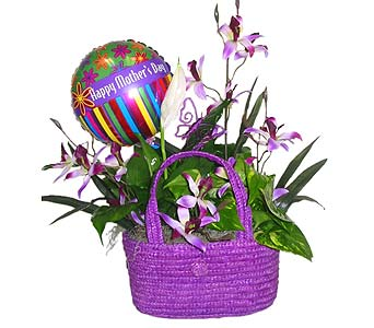 MDGP15 ''Field Of Orchids'' Handbag Planter in Oklahoma City OK, Array of Flowers & Gifts