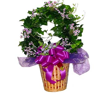GP10 ''English Ivy Hoop w/ Silk Flowers'' in Oklahoma City OK, Array of Flowers & Gifts