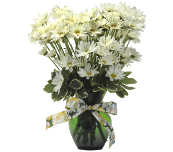 Daisy Delight Value Bouquet in St. Louis MO, Walter Knoll Florist