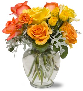 Butterscotch Roses in Oklahoma City OK, Capitol Hill Florist and Gifts