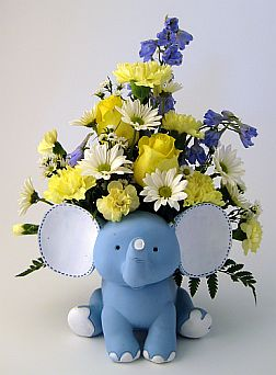 Welcome Baby-Boy in Salisbury MD, Kitty's Flowers