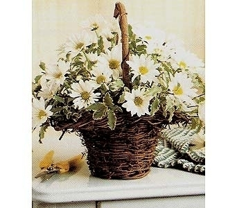 BASKET FULL OF DAISIES in Yelm WA, Yelm Floral