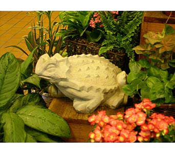 TCU Florists' Concrete Frog in Fort Worth TX, TCU Florist