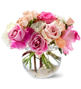 Teleflora's Roses on the Rocks in Evansville IN, Cottage Florist & Gifts