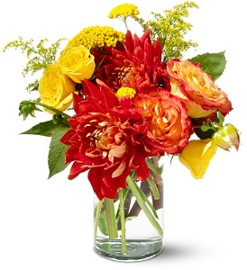 Teleflora's Dazzling Dahlias in Beaumont CA, Oak Valley Florist