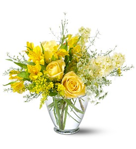 Teleflora's Delicate Yellow in Wausau WI, Blossoms And Bows