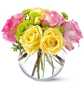 Teleflora's Pink Lemonade Roses in Lake Worth FL, Lake Worth Villager Florist
