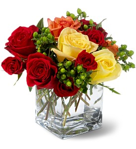 Teleflora's Carousel Roses in The Woodlands TX, Top Florist
