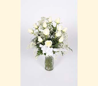 One Dozen White Roses Vased in Southampton PA, Domenic Graziano Flowers