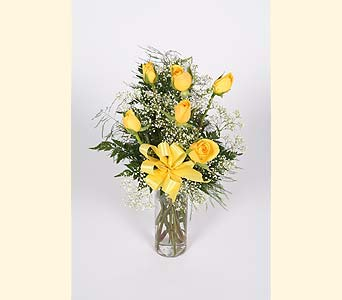 Half Dozen Yellow Roses Vased in Southampton PA, Domenic Graziano Flowers