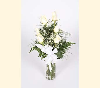 Half Dozen White Roses Vased in Southampton PA, Domenic Graziano Flowers