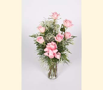 Half Dozen Pink Roses Vased in Southampton PA, Domenic Graziano Flowers