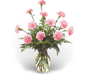 Dozen Pink Carnations in Wallingford CT, Barnes House Of Flowers