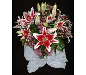 Fragrant Star Mix in Dallas TX, Z's Florist