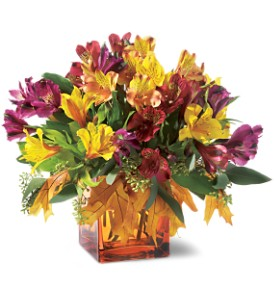 Teleflora's Autumn Alstroemeria Bouquet in Chicago IL, Henry Hampton Floral