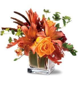 Teleflora's Orange Spice in Oklahoma City OK, Array of Flowers & Gifts