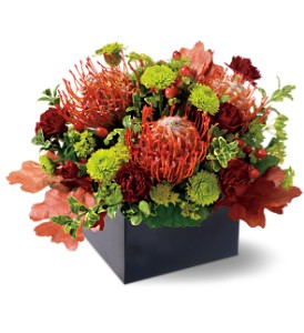 Protea Garden in Lenexa KS, Eden Floral and Events