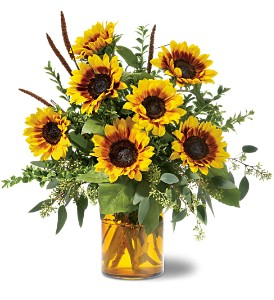 Sunrise Sunflowers in Little Rock AR, The Empty Vase