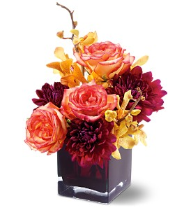 Teleflora's Burgundy Bliss in Isanti MN, Elaine's Flowers & Gifts
