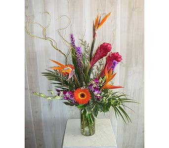 Island Wishes in Dallas TX, Petals & Stems Florist