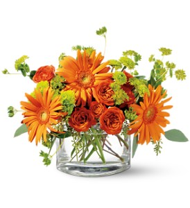 Teleflora's Fiery Fun in Sioux Lookout ON, Cheers! Gifts, Baskets, Balloons & Flowers