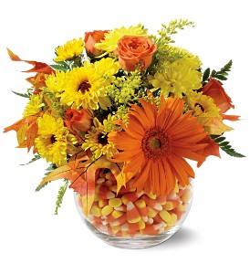 Sweet Autumn in Willow Park TX, A Wild Orchid Florist
