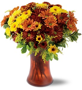 Country Chrysanthemums in Oklahoma City OK, Array of Flowers & Gifts