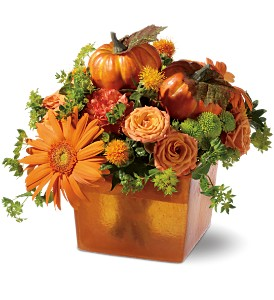 Pumpkin Spice in Broomall PA, Leary's Florist