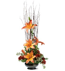 Zen Lilies in Lenexa KS, Eden Floral and Events