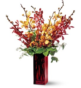 Teleflora's Orchid Splendor in New York NY, New York Best Florist