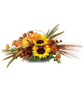 Harvest Time in Arcata CA, Country Living Florist & Fine Gifts