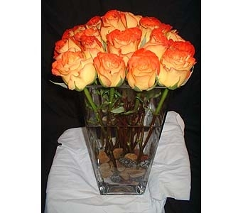 Circus Roses with River Rocks in Dallas TX, Z's Florist