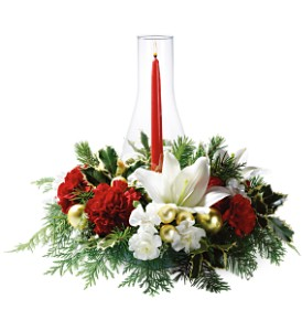 Luminous Holidays in Fredonia NY, Fresh & Fancy Flowers & Gifts