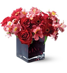 Teleflora's Wild Berry in Benton Harbor MI, Crystal Springs Florist