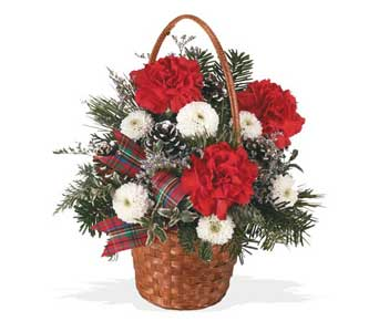 Holiday Basket of Cheer in Cohasset MA, ExoticFlowers.biz