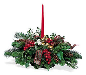Single Candle Holiday Greens Centerpiece in Cohasset MA, ExoticFlowers.biz